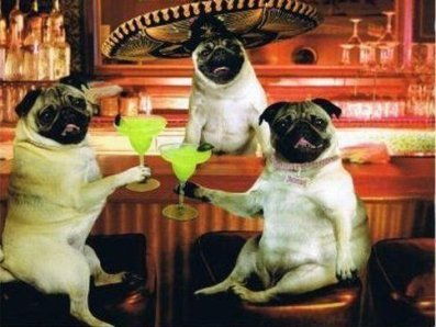 Margarita Time!!!!